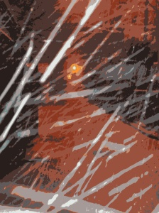 snowy night