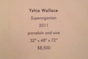 Yshia Wallace - superorganism