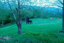 One of the most famous and photographed pieces at Storm King. For this reason, I don't want to know its name.